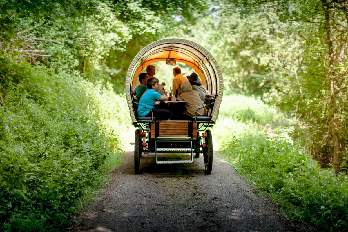 Planwagenfahrten und Kutschfahrten Haas in Nagold